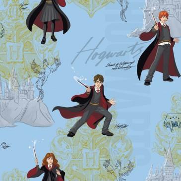 Harry Potter Warner Bros Stof HPMAGIC.380.140